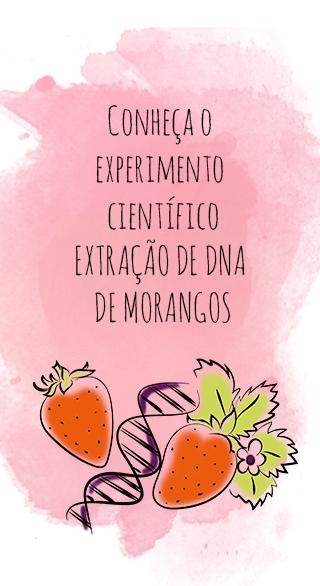 DNA de Morangos