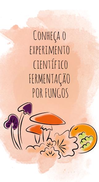 Fermentação por Fungos