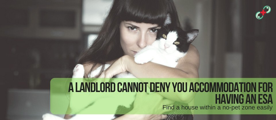 A landlord cannot deny you accommodation for having an esa